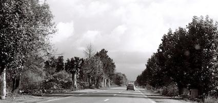 Route de Larb'a, nov. 2011 ©Malika Rahal
