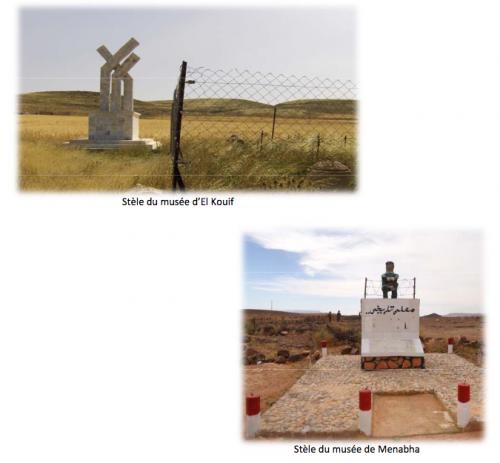 Image tirée du rapport sur la mise en oeuvre de la convention d'Ottawa relative aux mines antipersonnel (2016)